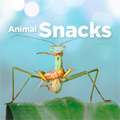 Animal Snacks